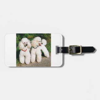 poodle group white luggage tag