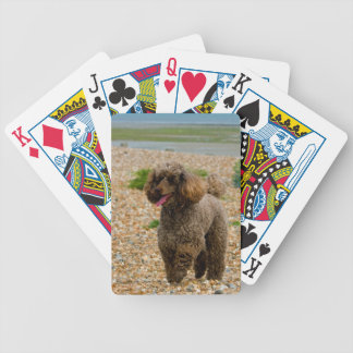 Poodle Miniature dog cute beautiful photo gift Bicycle Playing Cards