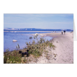 Poodle on Beach Greeting Card