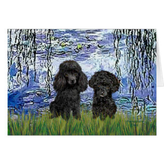 Poodle Pair (black) - Lilies 6 Card