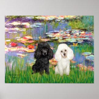 Poodle Pair (Black + White) - Lilies 2 Poster