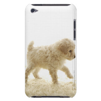 Poodle Puppy iPod Touch Case