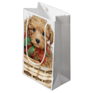 Poodle puppy sitting in Christmas basket Small Gift Bag