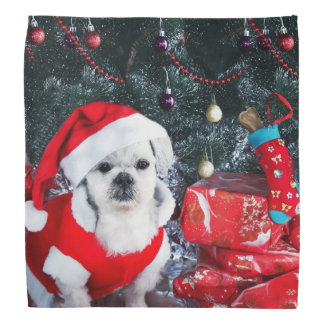 Poodle santa - christmas dog - santa claus dog bandana