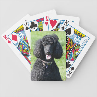 Poodle Standard dog black beautiful photo gift Poker Deck