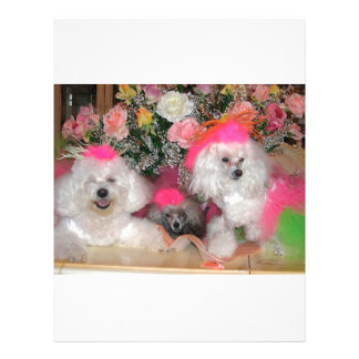 Poodles Customized Letterhead