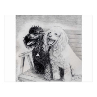 Poodles Postcard