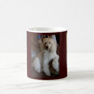 Poodles x 3 Mug