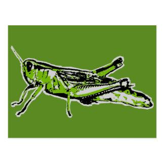 Pop Art Green Grasshopper Postcard