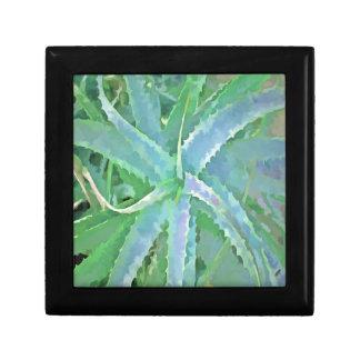 Pop Art Grey Green Aloe Gift Box