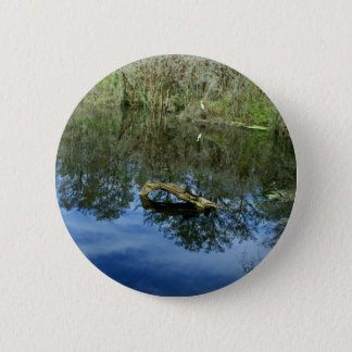 Pop Ash Pond 2 Inch Round Button