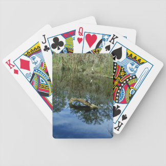 Pop Ash Pond Bicycle Playing Cards