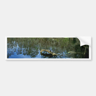 Pop Ash Pond Bumper Sticker