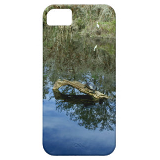 Pop Ash Pond Case For The iPhone 5