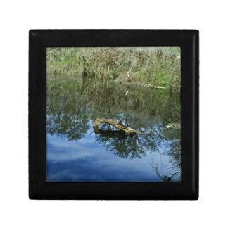 Pop Ash Pond Gift Box