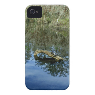 Pop Ash Pond iPhone 4 Case