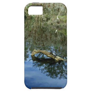 Pop Ash Pond iPhone 5 Cover