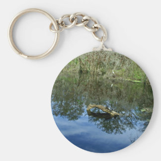 Pop Ash Pond Keychain