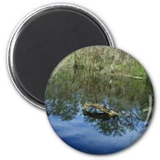 Pop Ash Pond Magnet