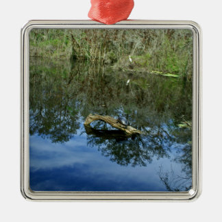 Pop Ash Pond Metal Ornament