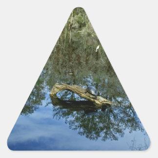 Pop Ash Pond Triangle Sticker