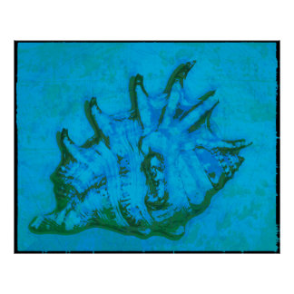 Pop Conch Poster