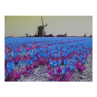 Popart Blue Tulips Windmills Landscape Poster