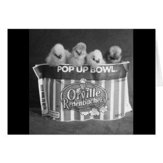 Popcorn Chicken greeting cards