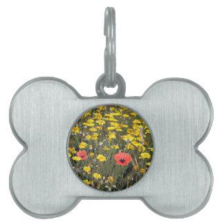 Poppies and daisies, El Camino Pet ID Tags