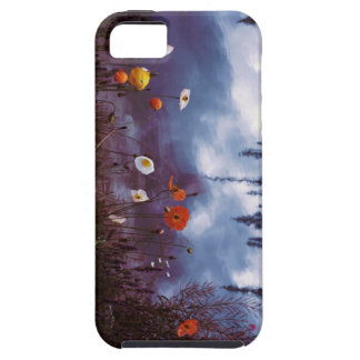 Poppies and Reflections iPhone 5s case iPhone 5 Cases