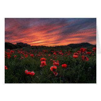 Poppies at Bamburgh  Greeting Card