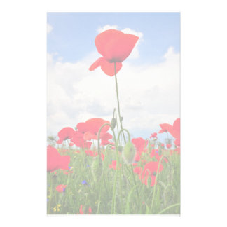 Poppies field personalized stationery