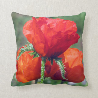 Poppies Grade A Cotton Throw Pillow 16x16
