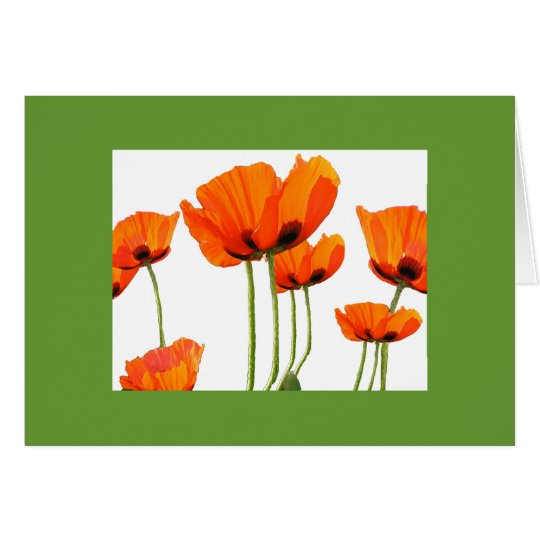 Poppies! Green Frame Card