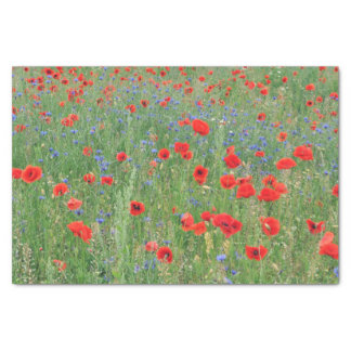 Poppies in a Cornfield Tissue Paper