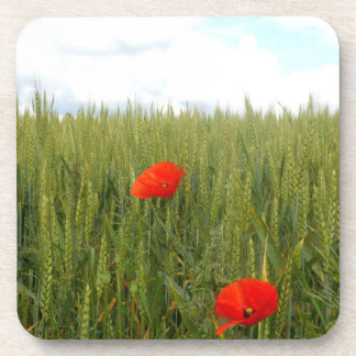 Poppies in a Wheat Field Hard Plastic Coaster