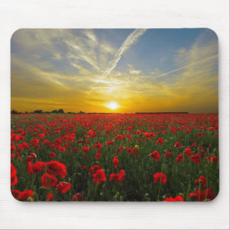 Poppies Mouse Pad