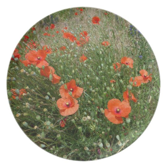Poppies Plate