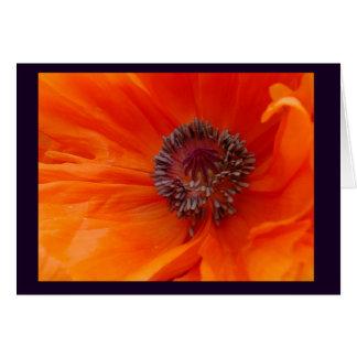 Poppy Blank Note Card