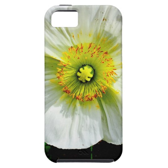 Poppy Case For The iPhone 5