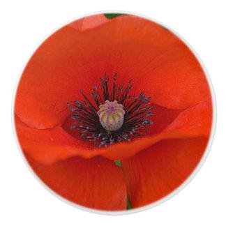 Poppy Ceramic Knob