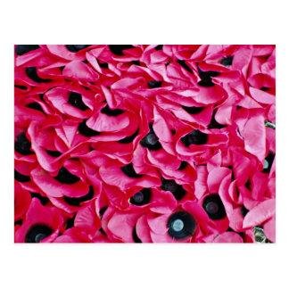 Poppy day  flowers postcard