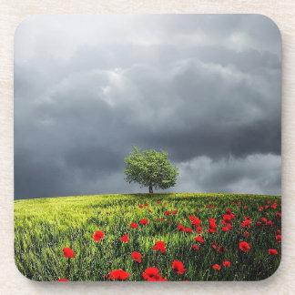 Poppy Field and Cloudy Sky Coaster