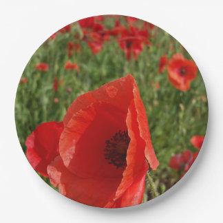 Poppy Field Paper Plate