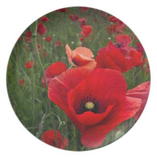 Poppy Field Plate