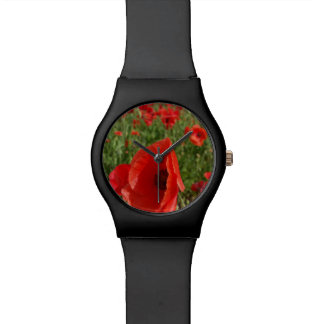 Poppy Field Watch