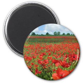 Poppy Fields Magnet