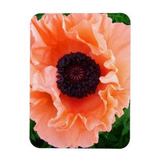 Poppy Flower Premium Magnet