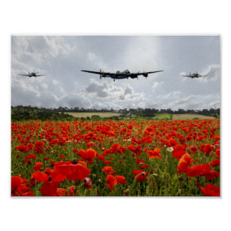 Poppy Flypast Poster