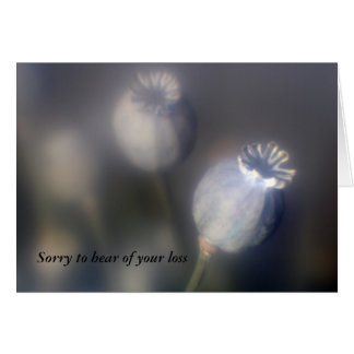Poppy Heads Sorry to hear of your loss Card Greeting Cards